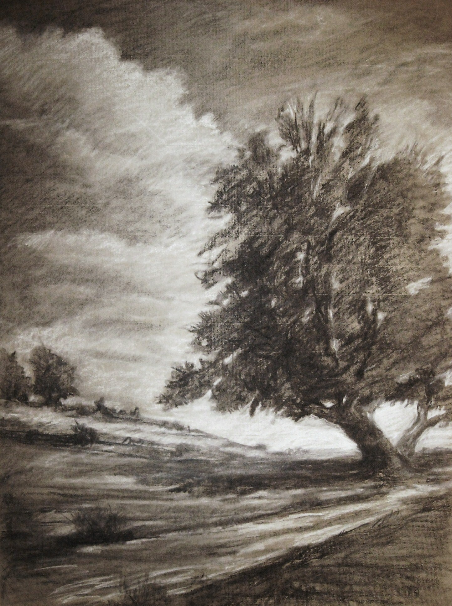 L 39 arbre de vie paysage dessin au fusain et pastel blanc - Dessiner un paysage ...